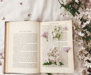 book, aesthetic, and flowers image