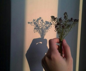 flowers, hand, and солнце image