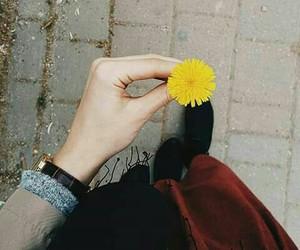 Image by Estabraq ♡