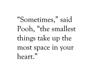 quotes, love, and pooh image