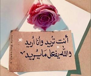 Image by fafakamali5