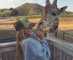 girl, cool, and giraffe image