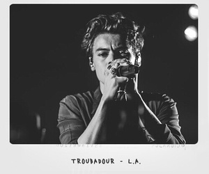 aesthetic, black and white, and Harry Styles image