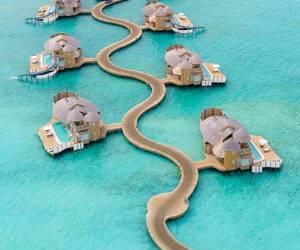 summer, Maldives, and vacation image