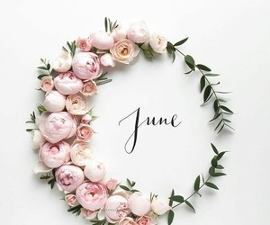 summer, flowers, and june image