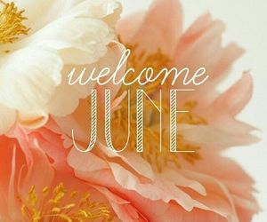 june, welcome, and summer image