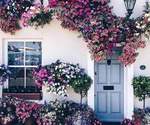 flowers, house, and home image