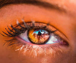 eyes, beauty, and brown image