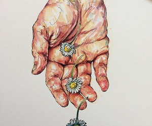 Image by Debora Fortuoso