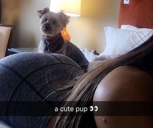 butt, dogs, and ari image