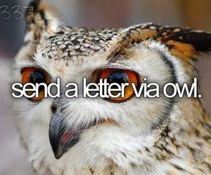 owl, before i die, and Letter image
