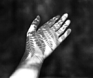 hand, nature, and indie image