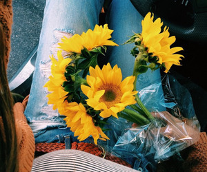 flowers, flores, and sunflower image