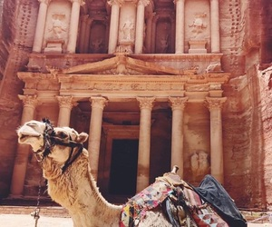 beauty, brunette, and camel image