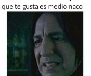 crush, diversión, and memes en español image