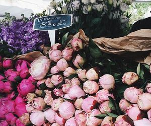 beautiful, flowers, and happy image