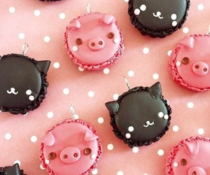 cat, macaroons, and pig image