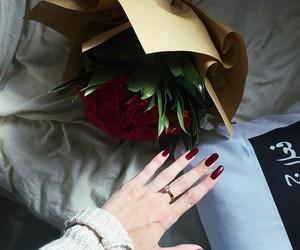 ros, love, and حُبْ image