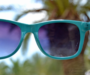 blue, florida, and summer image