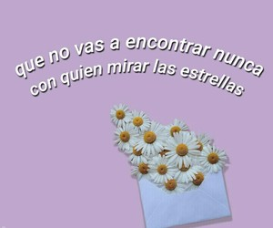 aesthetic, flowers, and frases image