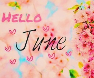 june, flowers, and hello june image