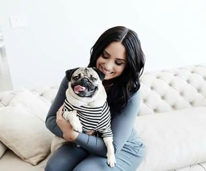 demi lovato and dog image