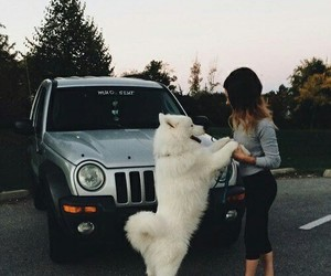 dog, car, and girl image