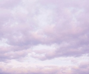 lavender, lilac, and aesthetic image