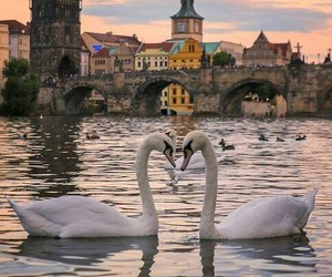 prague and city image