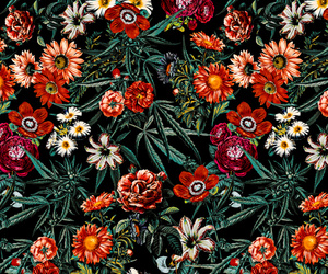 background, floral, and forest image
