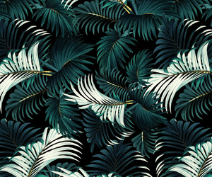 jungle and leaves image