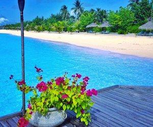 holidays, Maldives, and resort image