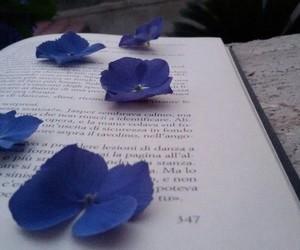 books twilight image