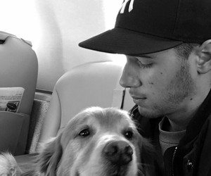 nick jonas, dog, and cute image