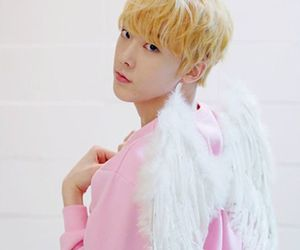 angel, wings, and sanha image