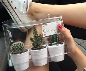 girl, plants, and 🇸🇪 image