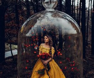 rose, yellow, and fantasy image