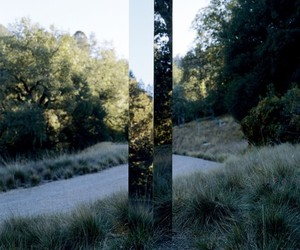 mirror and nature image