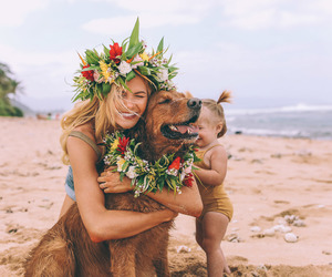 dog, family, and beach image