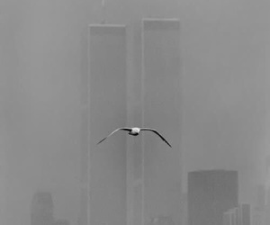black and white photography, world trade center, and cities image
