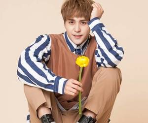 dongwoon, highlight, and beast image