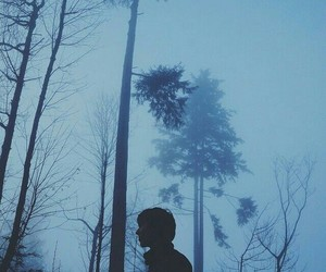 blue, photography, and forest image