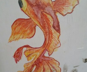 art, draw, and fish image