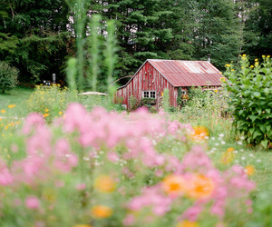 barn, landscape, and red barn image