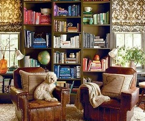 armchairs, home decor, and bookcases image