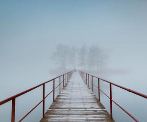 bridge, fog, and mist image