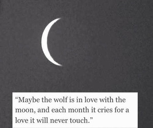 in love, moon, and poetry image