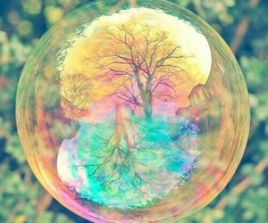 tree, bubbles, and nature image