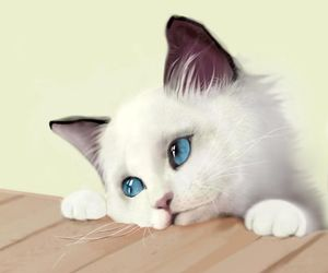 cat and adorable image