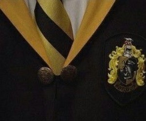 harry potter and hufflepuff image